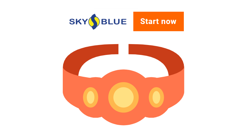 Sky Blue Credit versus Lexington Law: and the winner is Sky Blue Credit
